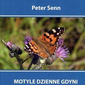 Motyle Dzienne Gdyni