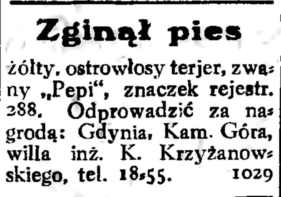 """Zginął pies żółty, ostrowłosy terjer, zwany """"Pepi"""", znaczek rejestr. 288"""