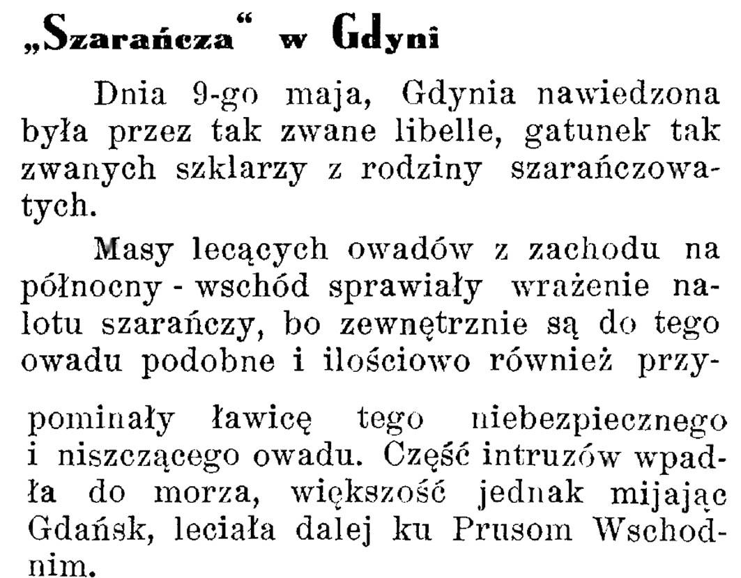 """""""Szarańcza"""" w Gdyni // Latarnia Morska. - 1934, nr 17, s. 10"""