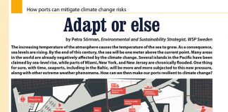 Adapt of else. How ports can mitigate climate change risks // Petra Sorman // Baltic Transport Journal. - 2017, nr 6, s. 34-35. - Il.