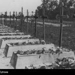 Widok-ogólny-cmentarza-wojskowego-na-Oksywiu
