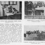 Polska-Reduta-miesięcznik-poświęcony-sprawom-obrony-kresów-zachodnich-i-kresów-wschodnich-1934,-nr-1,-s.19